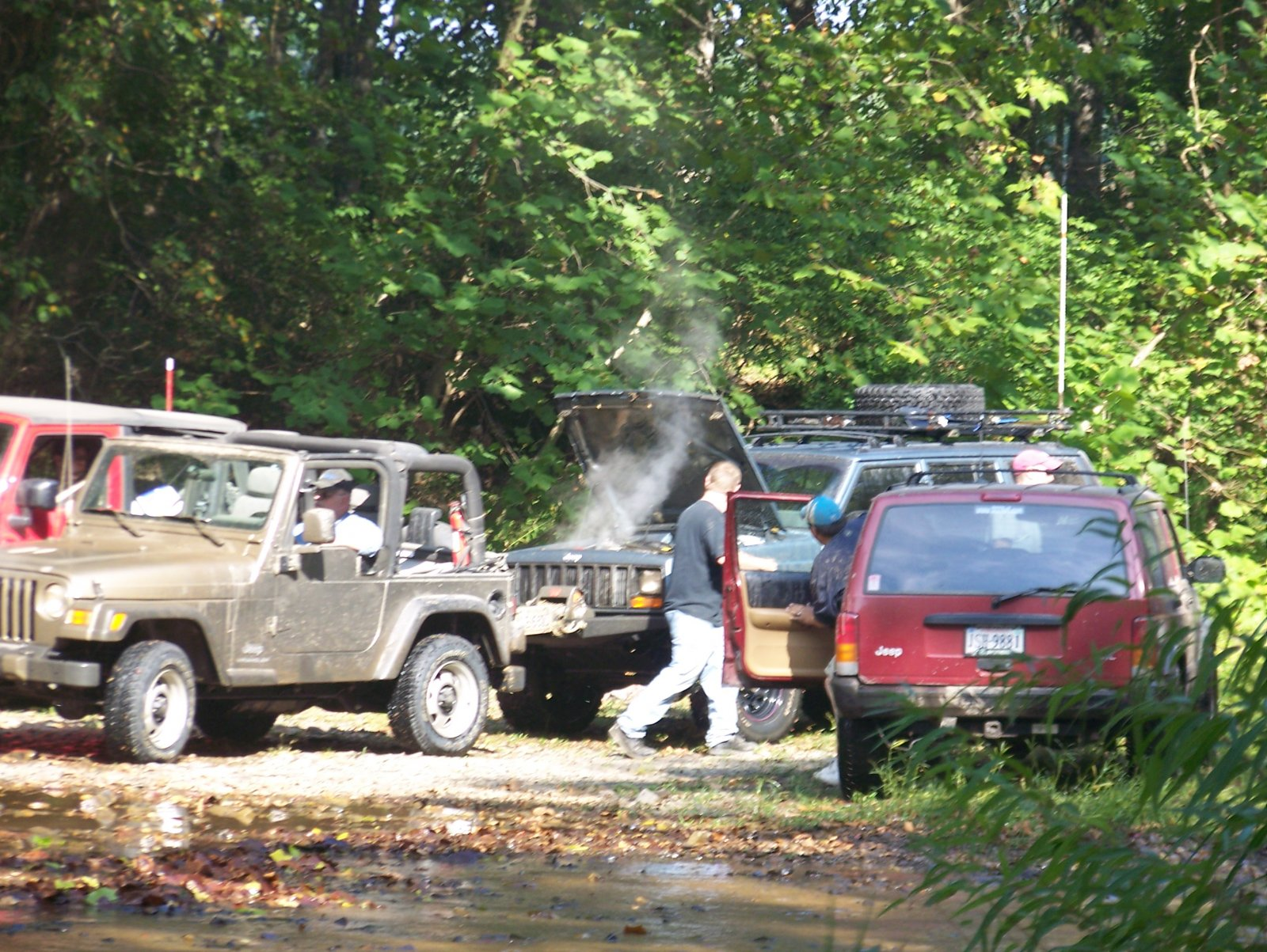SCC Lignite-Patterson Creek Fall 2008 (61).JPG