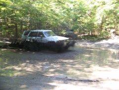 SCC Lignite-Patterson Creek Fall 2008 (23).JPG